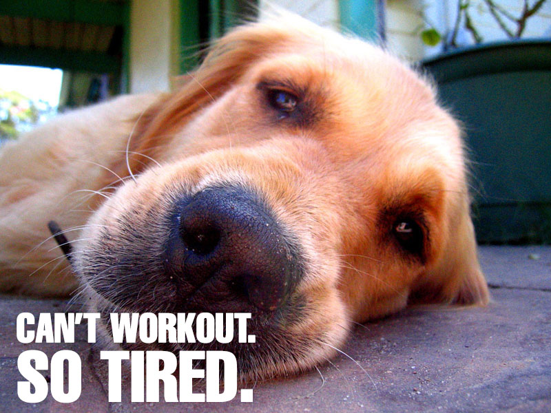 Too Tired To Workout, Too Focused Not To