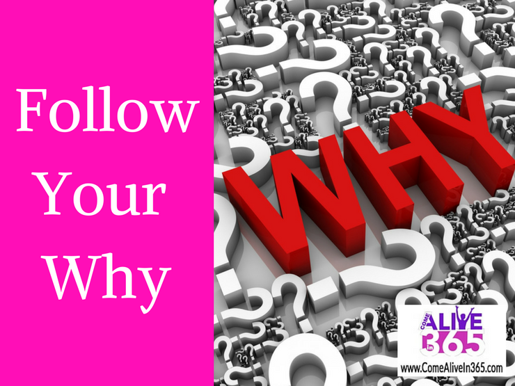Follow Your Why
